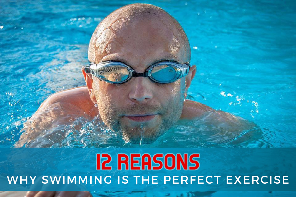 why-swimming-is-the-perfect-exercise